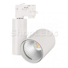 Светильник LGD-SHOP-4TR-R100-40W Warm SP3000-Fruit (WH, 24 deg)